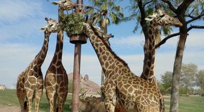 Photo of Zoo Phoenix Zoo at 455 N Galvin Pkwy, Phoenix, AZ 85008, United States