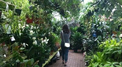 Photo of Garden Center Gethsemane Garden Center at 5739 N Clark St, Chicago, IL 60660, United States