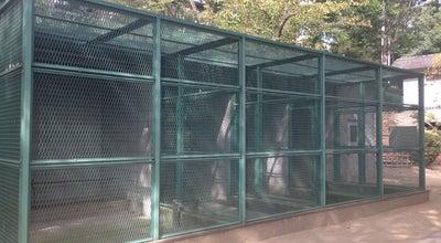 Photo of Park 鶴形山公園 at 本町12, 倉敷市 710-0054, Japan
