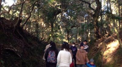 Photo of Trail 上の禰宜道 at 春日野町, 奈良市, Japan