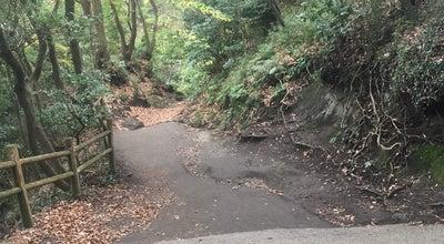 Photo of Trail 化粧坂 / 仮粧坂 切通し at 扇ガ谷, 鎌倉市 248-0011, Japan