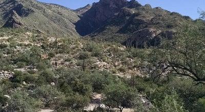 Photo of Trail Pontatoc Trail at 3961 E Playa De Coronado, Tucson, AZ 85718, United States