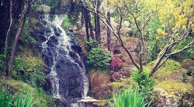 Photo of Botanical Garden Wellington Botanic Garden at 101 Glenmore St, Wellington 6012, New Zealand