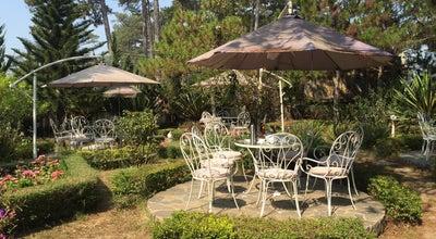 Photo of Coffee Shop Hoa Violet Chiều Thứ Tư at 14 Trần Hưng Đạo, Da Lat, Vietnam