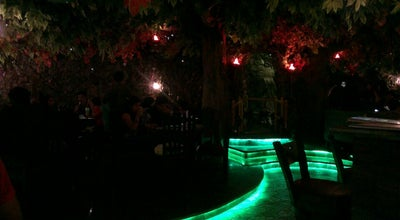 Photo of Diner Rainforest Resto-Bar at Phoenix Marketcity, Pune 411014, India