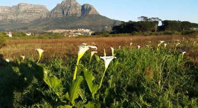 Photo of Park Rondebosch Common at Corner Park Rd & Milner Rd., Cape Town 7700, South Africa