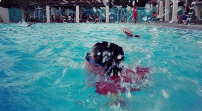 Photo of Pool Brea Plunge at 440-484 S Walnut Ave, Brea, CA 92821, United States