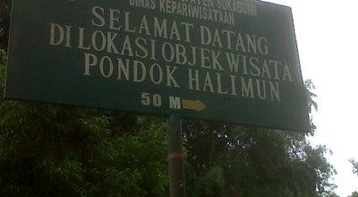 Photo of Trail Baru Halimun (TNGP) at Perbawati, Pintu Taman Nasional Gede Pangrango, sukabumi, Indonesia