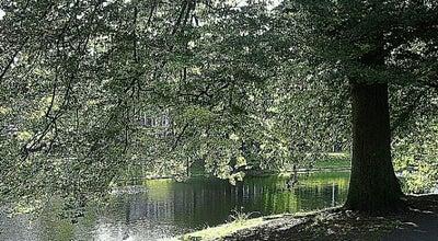 Photo of Park Rijsterborgherpark at Rijsterborgherpark, Deventer 7411, Netherlands