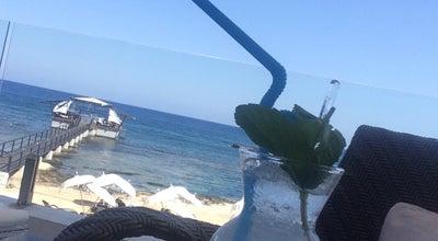 Photo of Hotel Bar Palm Beach Lobby Bar at Cyprus