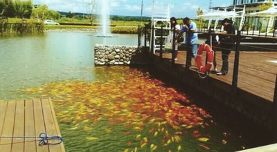 Photo of National Park Nuvali Park, Sta.Rosa, Laguna at Philippines