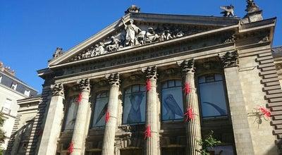 Photo of Science Museum Muséum d'Histoire Naturelle de Nantes at 12 Rue Voltaire, Nantes 44000, France