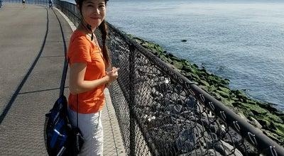 Photo of Park Picnic Point @ Governors Island at Gresham Rd, New York, NY, United States