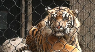 Photo of Zoo Kansas City Zoo at 6800 Zoo Dr, Kansas City, MO 64132, United States