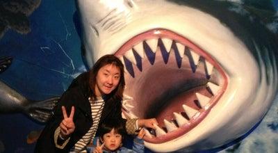 Photo of Aquarium 아이큐아리움 (i·QUARIUM) at 분당구 대왕판교로 670, 성남시 463-400, South Korea