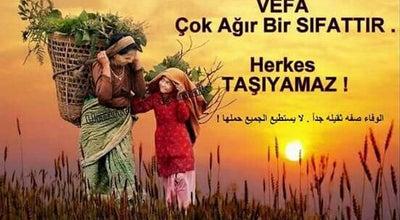 Photo of Art Gallery Isparta merkez at Turkey