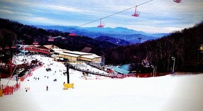 Photo of Ski Area Ober Gatlinburg Ski Resort at 1339 Ski Mountain Rd, Gatlinburg, TN 37738, United States