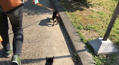 Photo of Playground 兵庫県立 西猪名公園 at 久代6-30-1, 川西市 666-0024, Japan