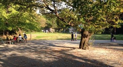 Photo of Park 八幡山公園 at 浅間町1-1, 平塚市 254-0041, Japan