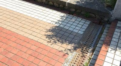 Photo of Lake 図書館前の池 at 不老町, Nagoya-shi 464-8601, Japan