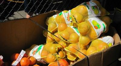 Photo of Food Truck Lake Jovita Farmers Market at Po Box 1292, San Antonio, FL 33576, United States