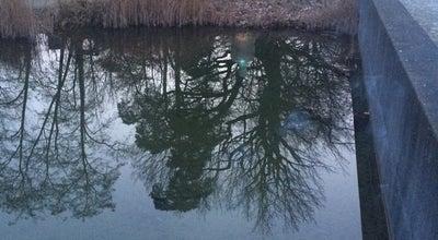 Photo of Lake HPI-Teich at Potsdam, Germany