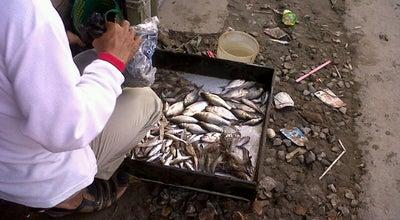 Photo of Fish Market Pasar Sungai Lulut at Jalan Veteran Km. 6 Sungai Lulut, Banjarmasin, Indonesia