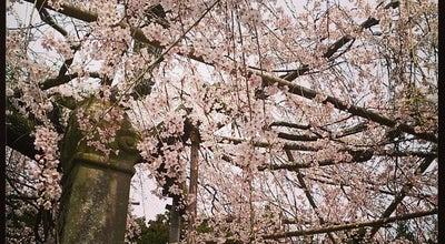 Photo of Temple 千手院 at 石橋町385, 松江市 690-0881, Japan