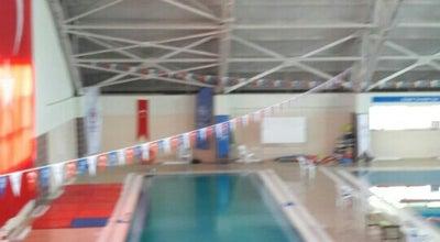 Photo of Pool Yalova Kapalı Yüzme Havuzu at Turkey