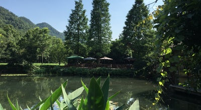 Photo of Chinese Restaurant 绿茶餐厅 Green Tea Restaurant at 西湖区龙井路 83 路, Hangzhou, Zh, China