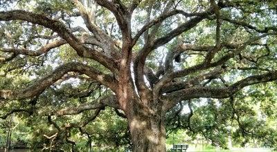 Photo of Park Audubon Park at 6500 Magazine St, New Orleans, LA 70118, United States
