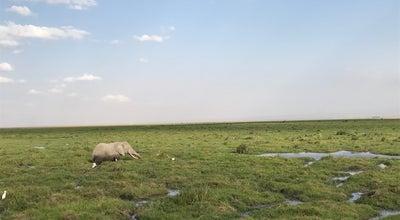 Photo of Park Amboseli National Park Kenya at Kenya