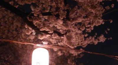 Photo of Monument / Landmark 玉川兄弟の像 at 玉川1-1, 羽村市 205-0024, Japan