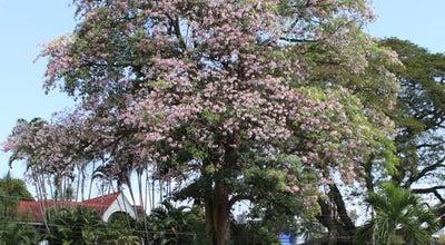 Photo of Park King George V Park at Haynes Street, St Clair, Trinidad and Tobago