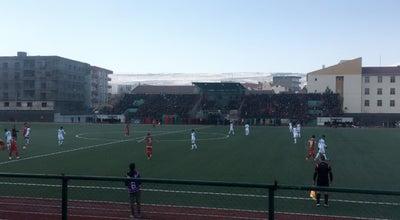 Photo of Arcade cizre şehir Stadyumu at Dagkapi Mahallesi, Cizre 73200, Turkey