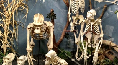 Photo of Science Museum Museum of Osteology at 10301 S Sunnylane Rd, Moore, OK 73160, United States