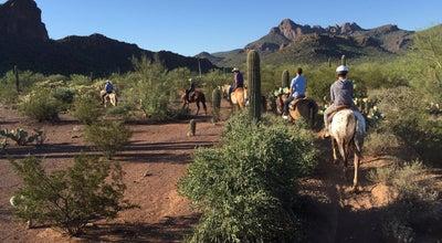 Photo of Trail Marana Desert at Marana, AZ 85653, United States