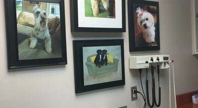 Photo of Other Venue Warm Springs Animal Hospital at 2500 W Warm Springs Rd, Las Vegas, NV 89119