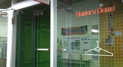 Photo of Arcade 羽村ドームバッティングスタジアム at 五ノ神4-13-3, 羽村市 205-0011, Japan