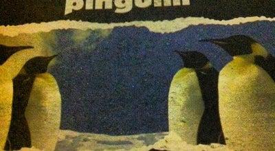 Photo of Dive Bar Boteco Pinguim at Av. Assis Brasil, 4111, Porto Alegre 91110-000, Brazil