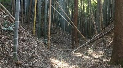 Photo of Historic Site 本佐倉城跡 at 本佐倉字城ノ内, 印旛郡酒々井町, Japan
