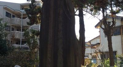 Photo of History Museum 船橋市郷土資料館 at 薬円台4-25-19, 船橋市 274-0077, Japan