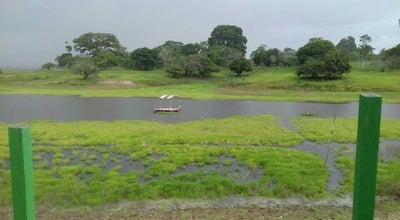 Photo of Lake Lago Macurany at Brazil