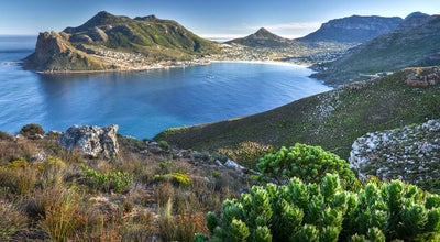 Photo of Road Chapmans Peak Drive at Chapmans Peak Dr, Cape Town 7806, South Africa