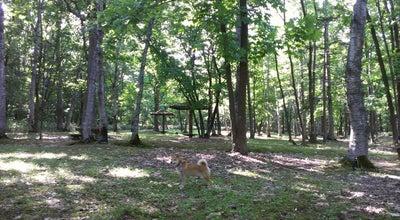Photo of Park 神楽岡公園 at 神楽岡公園, 旭川市 078-8327, Japan
