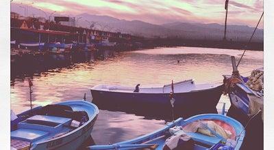 Photo of Fish Market Faroz Balıkçı Barınakları at Trabzon, Turkey