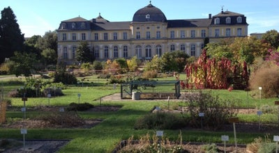 Photo of Botanical Garden Botanischer Garten at Meckenheimer Allee 171, Bonn 53115, Germany