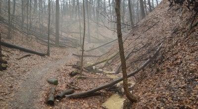Photo of Trail Hampton Hills Metro Park at 2925 Akron-peninsula Rd., Akron, OH 44313, United States