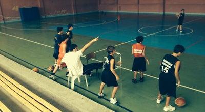 Photo of Basketball Court Toygarhan Yeşilcan Basketball Academy at Turkey