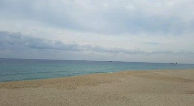 Photo of Beach 사근진 해수욕장 at South Korea